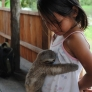 Baby sloth hugs little girl