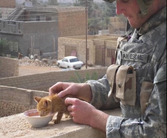 Private Aweome is feeding a kitten