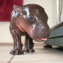 Harry the baby hippo
